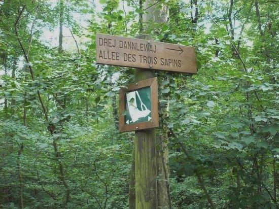 Parc du Château de Pourtalès : Many hiking paths