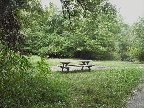 Parc du Château de Pourtalès : Picnic areas