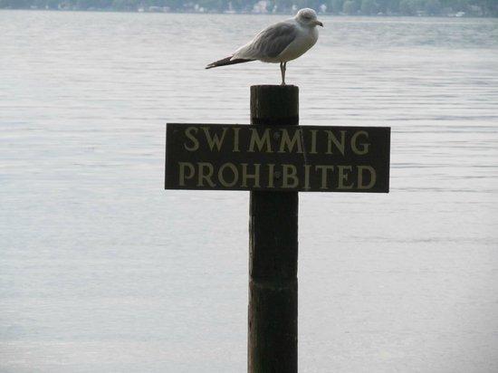 Taughannock Falls State Park: No Swimming at the Park on Cayuga Lake