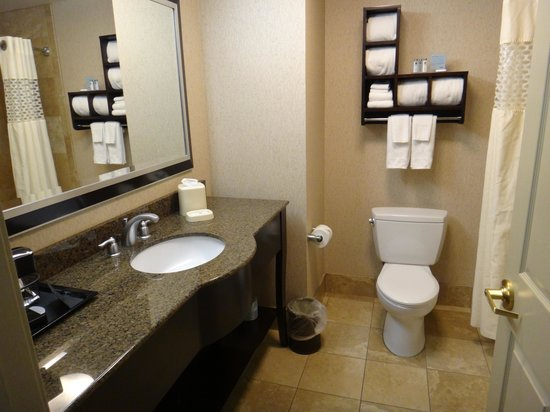 Hampton Inn & Suites Buffalo Downtown : Bathroom