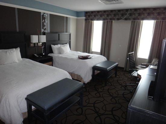 Hampton Inn & Suites Buffalo Downtown : Double Room