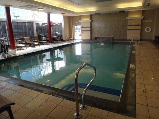 Hampton Inn & Suites Buffalo Downtown: Pool