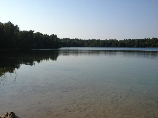 Myles Standish State Forest: One of the Charge Pond beaches