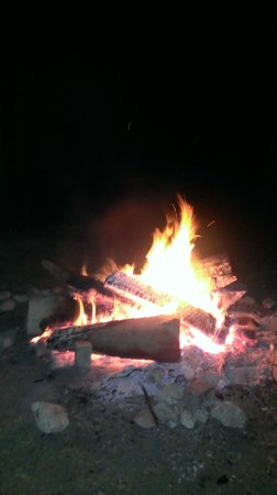 Forgewood Camping: camp fire
