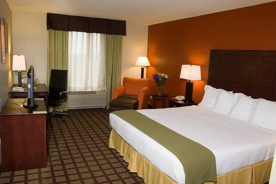 Holiday Inn Express Hotel & Suites Chicago-Algonquin : Guest Room King Bed