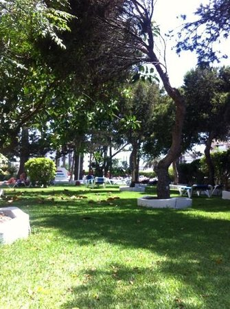Playa del Sol -  Adults Only: giardino
