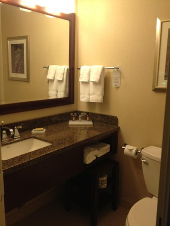 Atlanta Airport Marriott: Bathroom