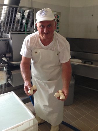 Italy Hotline Custom and Gourmet Tours: The owner of the cheese factory showing us fresh Mozzarella