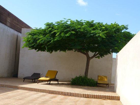 Hotel Porto Santo & SPA : Coin ombragé près de la piscine