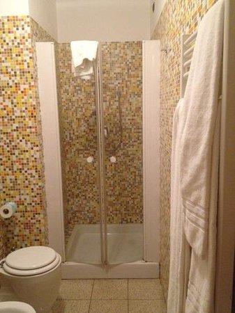 Hotel Panorama: shower