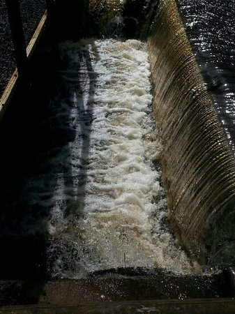 Lake View Cottage: the weir