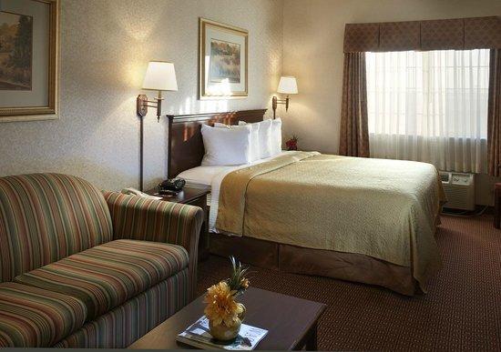 Quality Inn & Suites Near University: Standard King Room