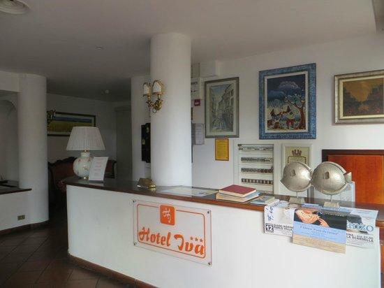 Hotel Iva: La réception