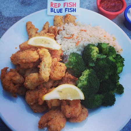 Fish and chips red fish blue fish tripadvisor for Red fish blue fish key west
