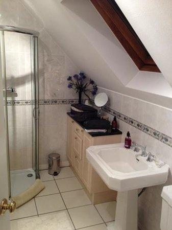 Ardarroch Cottage B&B: Baño