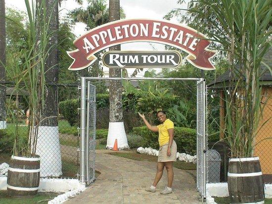 Jamaica Exquisite - Day Tours : Appleton Estate Rum Tour - St. Elizabeth