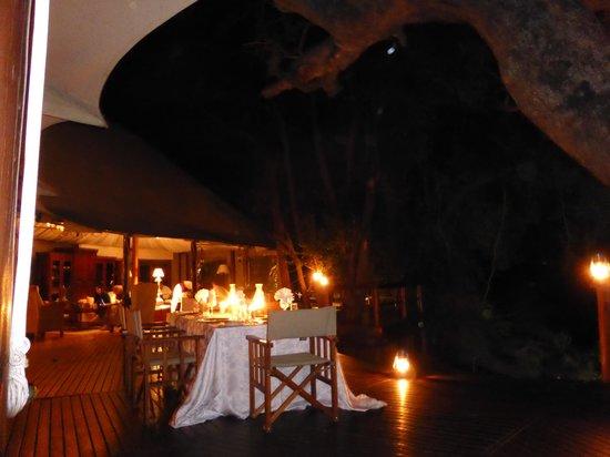 Hamiltons Tented Safari Camp: Cena. Dinner