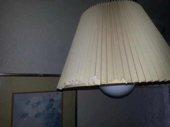 Surf Motel: Lampshade