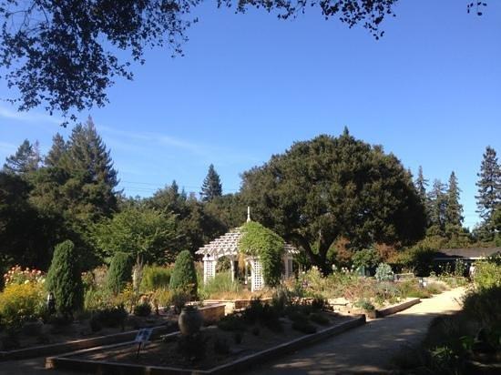 Elizabeth F. Gamble Garden : Very beautiful place to stroll.