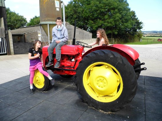 Playdale Farm Park: play on the tractor