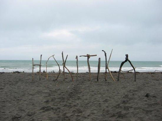 Kawhaka Lodge : Beach Art