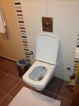 Royal Asarlik Beach : LES WC