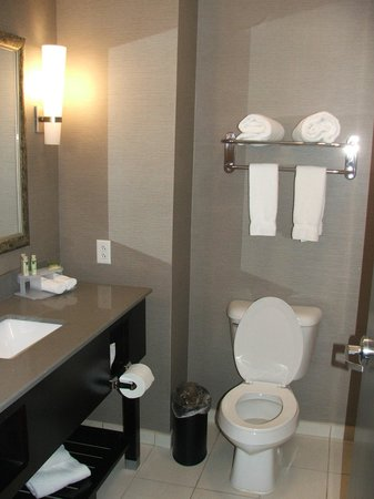 Holiday Inn Express Hotel & Suites North Fremont : BATHROOM