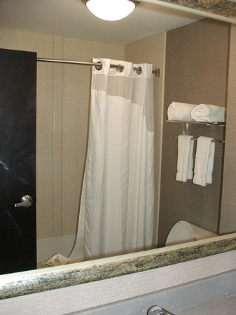 Holiday Inn Express Hotel & Suites North Fremont : BATHROOM ADDTL VIEW