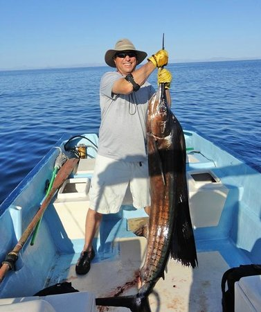 Great fishing in loreto stay at coco cabanas picture for Baja california fishing