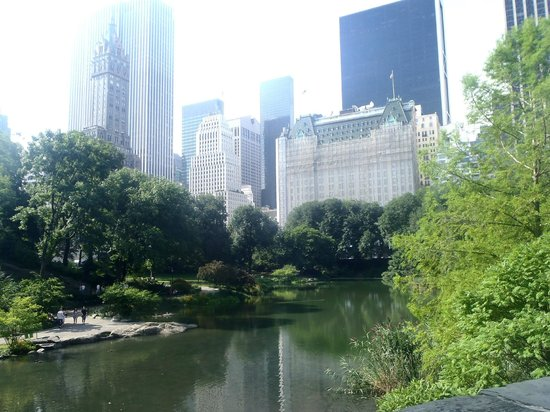 New York Hilton Midtown: Tranquility of Central Park