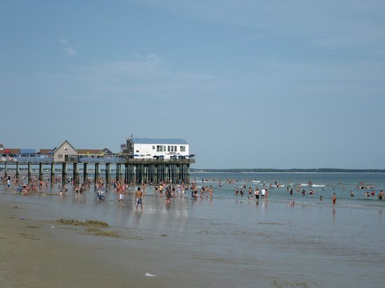 The Pier Low Tide Picture Of