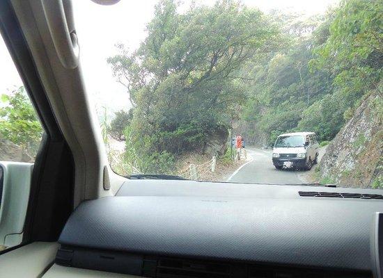 Usuebae Lookout: 途中かなり狭い一本道あり。