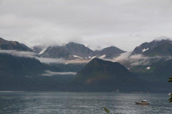 Alaska Paddle Inn: View
