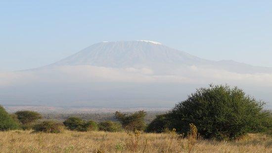 Satao Elerai: The view