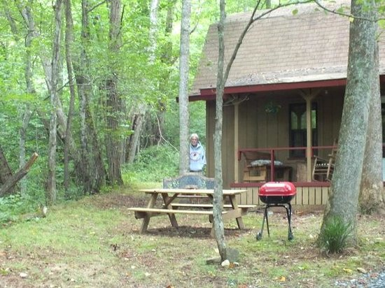 Henson Cove Place B&B : Cabin w/ Lurker ...