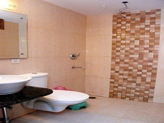 Hotel Lav-Kush Deluxe: Bathroom 1