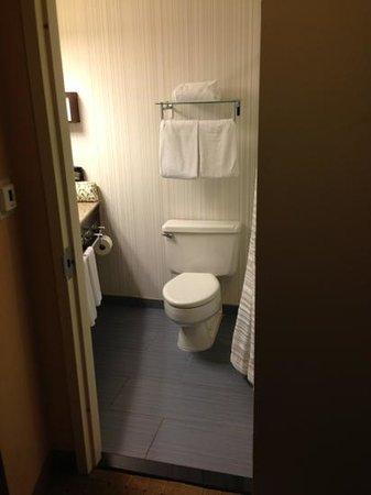 Hyatt Regency New Brunswick: bathroom