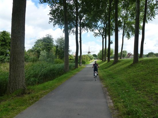 Eric Popelier : Canal bike path to Damme