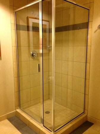 "Harrah's Ak-Chin Casino Resort : separate shower in ""resort premium poolside queen room"""