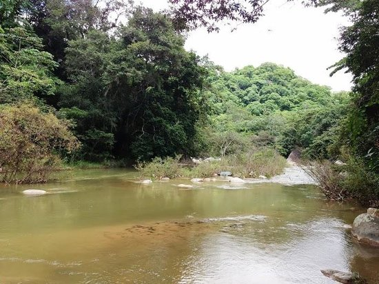 Vallarta Botanical Gardens: The Swimming Area Of The River.