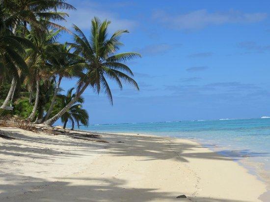 Makayla Palms: Beach