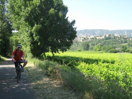 Memoires de Provence : Countryside
