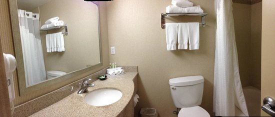 Holiday Inn Express & Suites Surrey: Bathroom