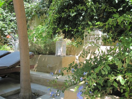 Spirit of the Knights Boutique Hotel: Garden, lounging area