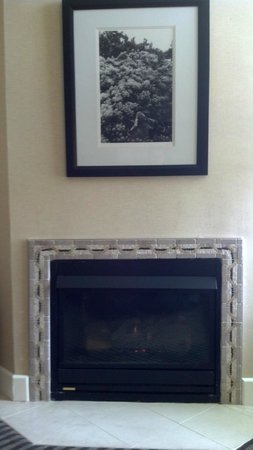 BEST WESTERN PLUS Stevenson Manor: Fireplace in our room