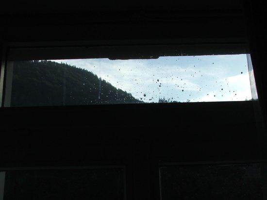 Parkhotel du Sauvage: Zimmerfenster