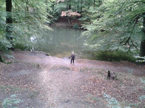 Park Sonsbeek: Park met beken en vijvers