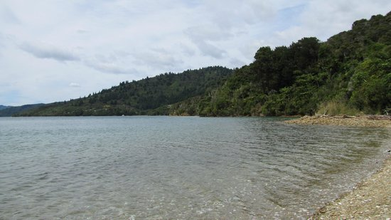 Queen Charlotte Track: Some parts of the track meet the beautiful sea!
