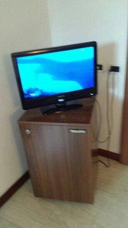 Hotel Villa Undulna Terme della Versilia: televisione sopra il frigorifero