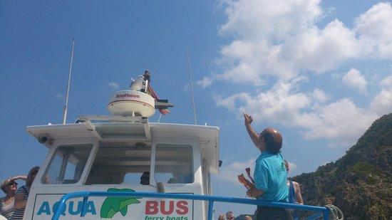 Aquabus Ferry Boats: Feeding the gulls